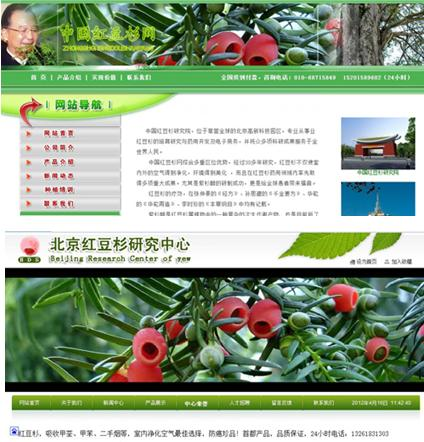 警惕网上售卖红豆杉种子的违规网站