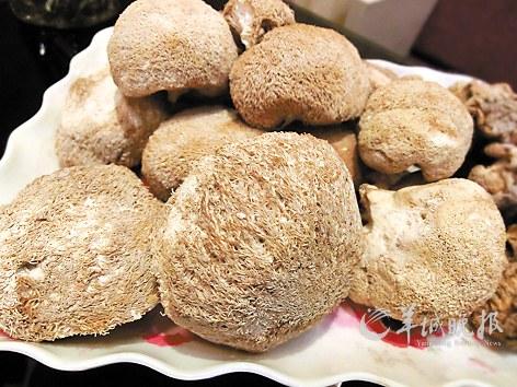 秋季滋补品:猴头菇,润肠胃(图)