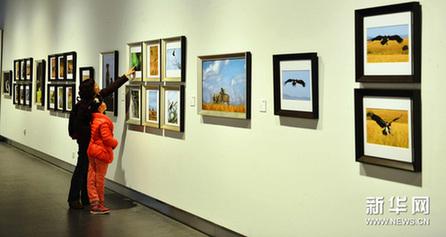 11月25日,一名小朋友与家长一起欣赏野生动物摄影作品。新华网图片 摄