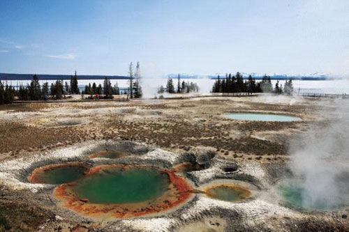 热水潭里,喷气孔和温泉遍地满布