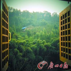 一推开窗棂就是满目自然风景