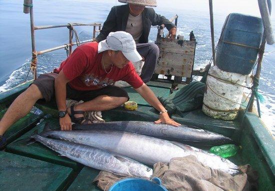 交通部提醒驴友西沙旅游勿租渔船 易发生险情
