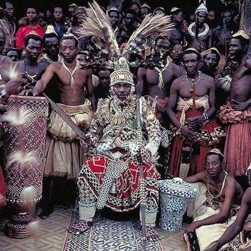 草原霸主 看看非洲大陆上的国王们的生活