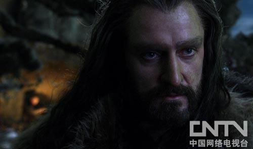 身负家仇国恨的矮人王索林矮人王索林.橡木盾:意欲复仇的硬...
