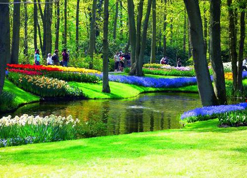 美丽的荷兰