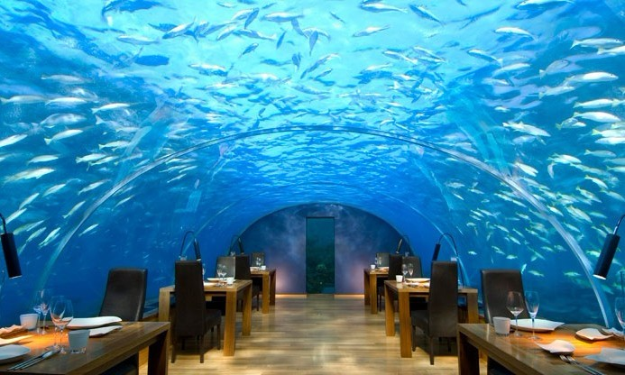 港丽岛:海底餐厅 独一无二