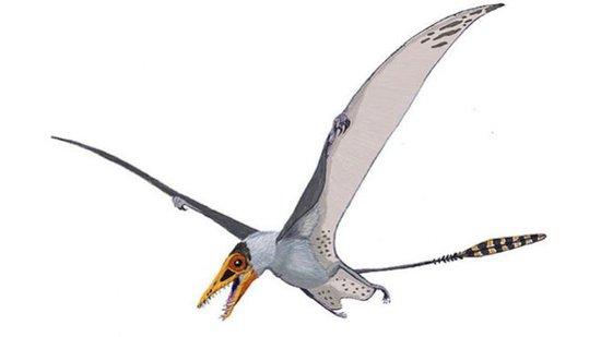古生物学者称:一亿年前英国上空曾遍布翼龙