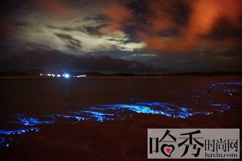 福建蓝眼泪奇观美如阿凡达 夏季必去的国内最美海滩