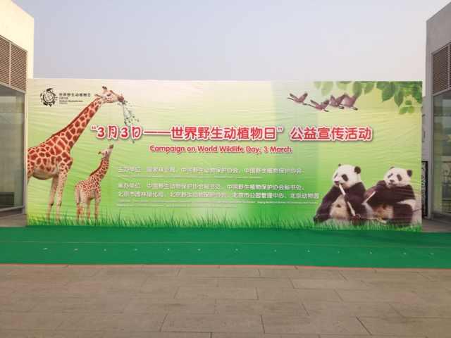 北京动物园象馆广场
