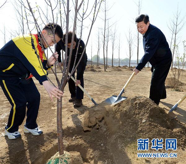 这是习近平同大家一起植树。新华社记者 李涛 摄