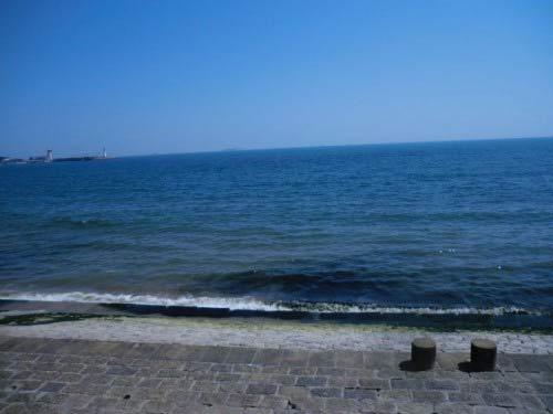 我的大海梦