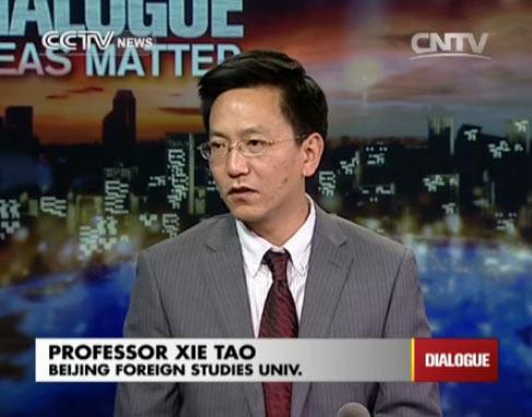 Professor Xie Tao, Beijing Foreign Studies Univ.