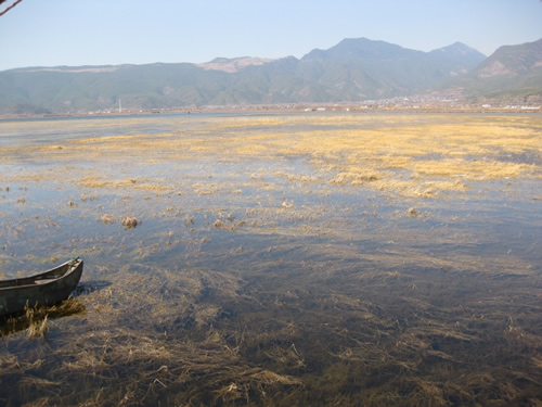 丽江保护区——什刹海