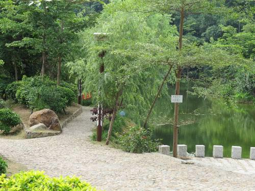 丰山村湿地公园