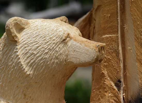 Chainsaw artist finds niche carving wood bears cctv news