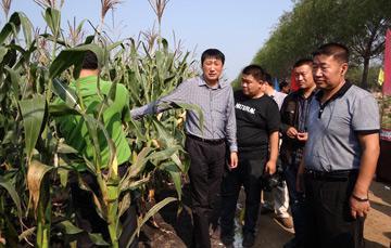 图为于海河(右一)在田间检查检查农业生产。