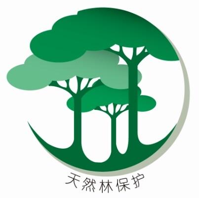 运用近大远小的透视原理,及各类绿色,传达天然林的深邃感与自然感