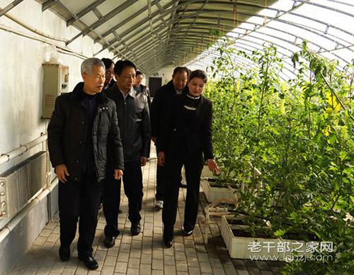 农村在北京退休