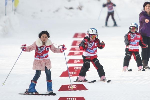 В городе Чжанцзякоу с размахом отметили международный день зимних видов спорта