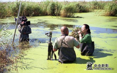 《走遍中国》栏目组在工作现场 (1)副本.jpg