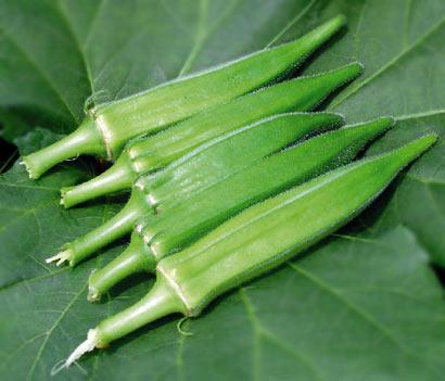 绿色素食(图片来源:资料图)