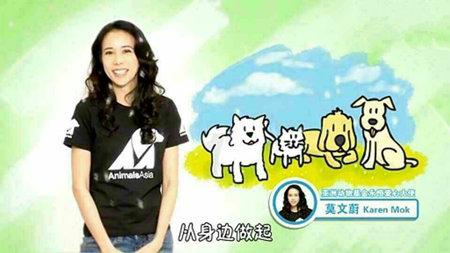 领养动物宣传海报