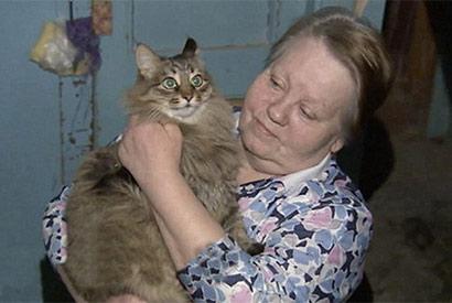 流浪猫玛莎拯救弃婴,成为英雄。(图片来源:网页截图)