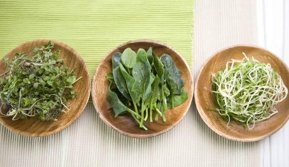 这4种食物发芽后营养翻倍