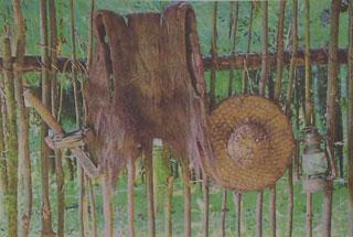 杨善洲用过的蓑衣、斗笠等。