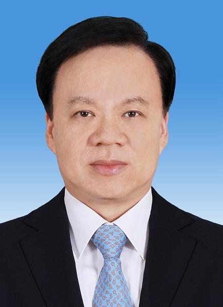 陈敏尔同志简历