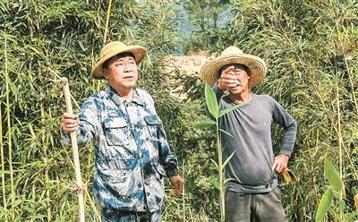 林上斗(左)参加百香果园义务劳动。
