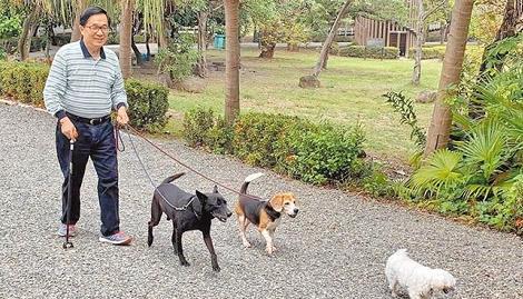 前台湾地区领导人陈水扁保外就医,在公园遛狗。
