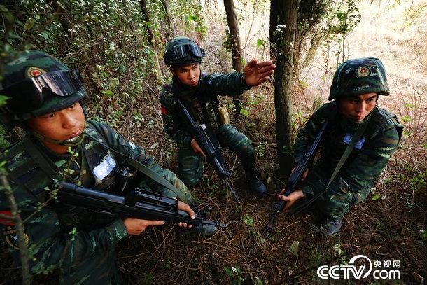 图为特战队员在进行野外战术训练.赵明军摄