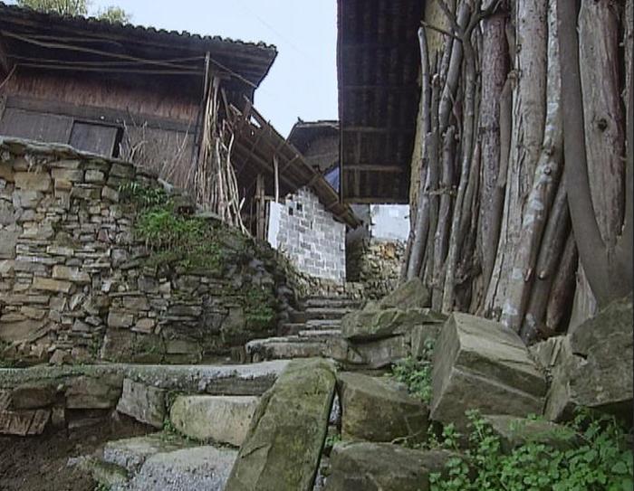 潮湿的气候给村里的石阶披上了一层湿滑的青苔。