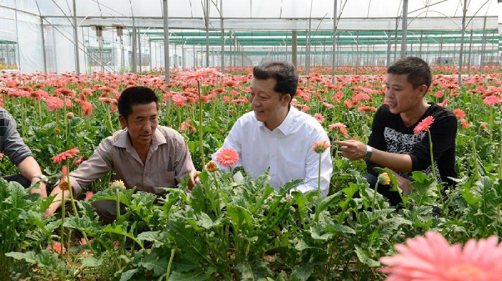 廖俊波(中)在福建省政和县铁山镇东涧村向花农了解花卉生产情况(2014年4月18日摄)。新华社发(徐庭盛 摄)