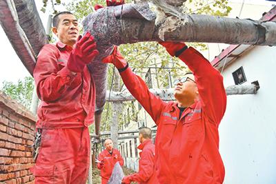 河南濮阳市中原油田濮东采油厂党委组织开展党员志愿服务,为职工宿舍包扎供热管线。