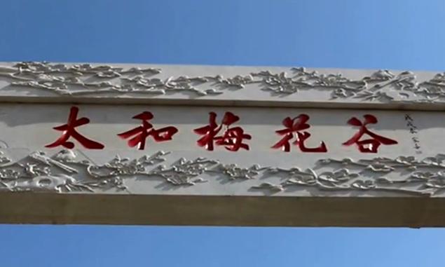 湖北十堰市69个A级景区恢复开放 对全国医护人员有优惠政策