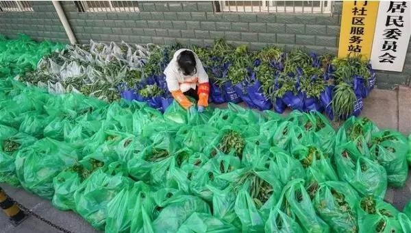 2月9日,武汉市武昌区首义路街大东门社区为部分困难居民免费提供蔬菜供应。新华社记者 程敏 摄
