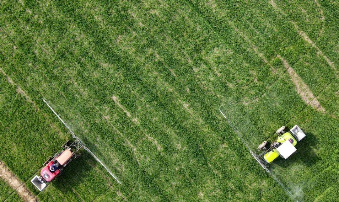 △今年2月,农民驾驶农用机械在江苏省扬州市江都区浦头镇的一块麦田里喷洒农药。