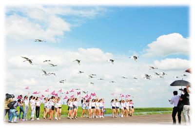 党建 滚动新闻  图二 图一   为保护丹顶鹤,保护湿地,弘扬鹤文化,全面