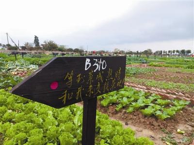 都市家庭农场雕塑