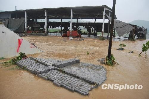 Local authorities in central and southwest China are on alert to respond to emergencies caused by severe storms and floods.