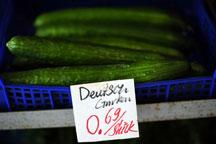 Cucumber sales plummet in Europe