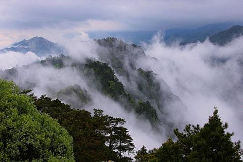 杜鹃山景区位于全国著名的5a级风景名胜区井冈山市茨坪东南部,距离