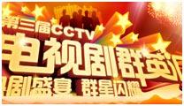 <center>第三届CCTV电视剧群英汇</center>
