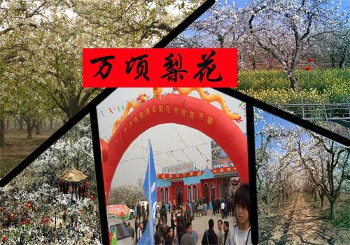 http://p2.img.cctvpic.com/xianyujingji/20120517/images/1346745863622_1346745863622_r.jpg