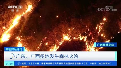 [央视财经评论]广东、广西多地发生森林火险