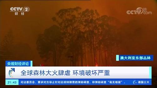 [央视财经评论]全球森林大火肆虐 环境破坏严重