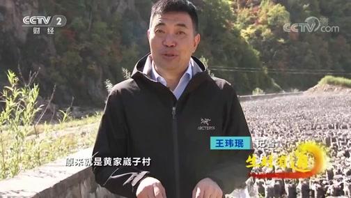 《生财有道》 20191209 生态中国乡村行 吉林抚松:生态山水美 挣钱宝贝多