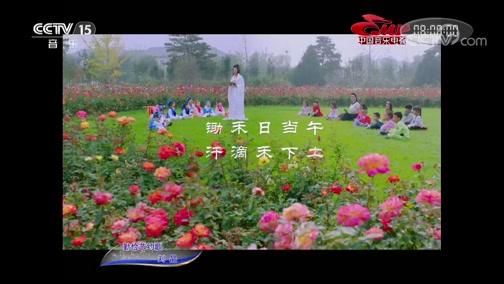 《中国音乐电视》 20191213